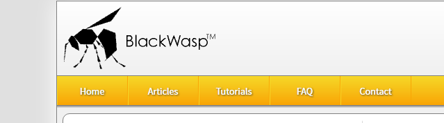 Learning to code or need a Refresher, BlackWasp can help!